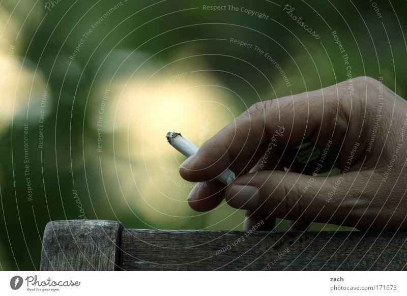 Raucherhand Mensch Hand grün Erholung Holz Garten Zufriedenheit Haut Finger Rauchen festhalten Krankheit Ring Rauch Stress Zigarette