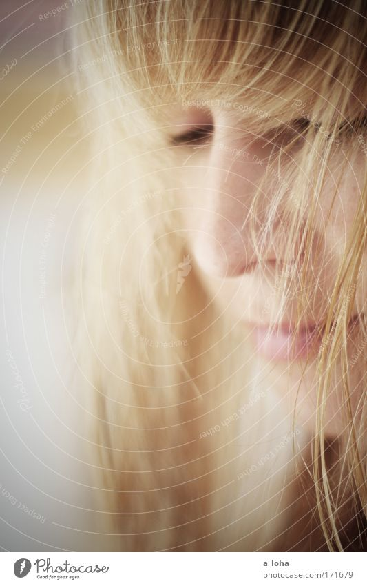 life Mensch Jugendliche schön Einsamkeit ruhig Gesicht Leben feminin Kopf träumen blond Nase ästhetisch Wunsch Junge Frau Sehnsucht