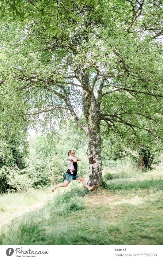Frau auf Schaukel an einem Baum Lifestyle elegant Stil Freizeit & Hobby Spielen Ausflug Freiheit Sommer Sommerurlaub Mensch feminin Erwachsene Leben 1 Umwelt