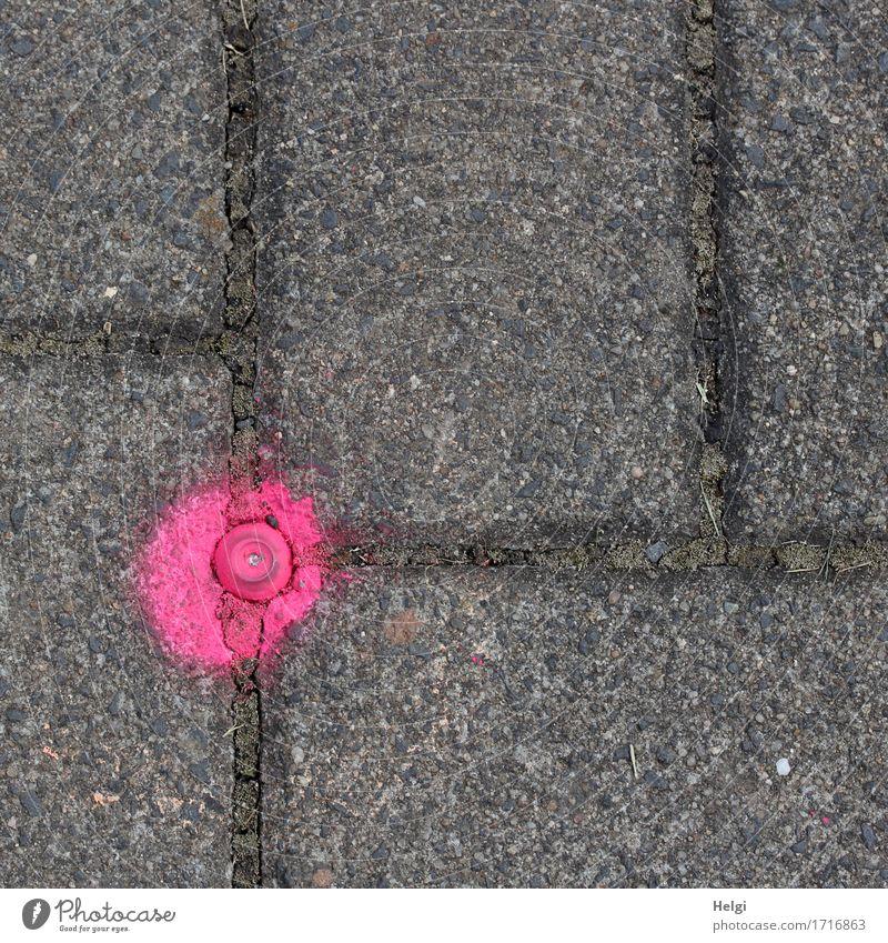 . Fußgänger Wege & Pfade Fußweg Stein Schriftzeichen Punkt außergewöhnlich einfach einzigartig klein grau rosa bizarr Ordnung Wandel & Veränderung