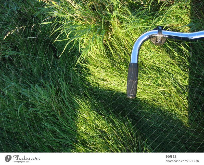 Fotonummer 126633 Natur grün Pflanze Sommer Freude Umwelt Landschaft Wiese Spielen Bewegung Gras Garten Park Fahrrad Freizeit & Hobby Technik & Technologie