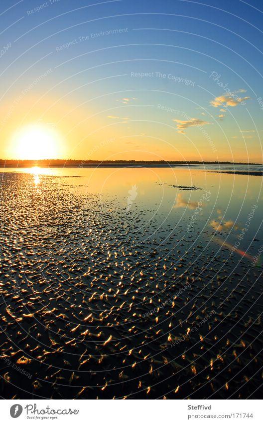 Fernweh Natur Wasser Sommer Strand ruhig Sand Landschaft Zufriedenheit Stimmung Küste Erde Warmherzigkeit Gelassenheit Sonnenuntergang Australien Fernweh