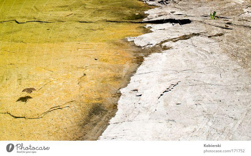 halb voll halb leer Natur Wasser Sommer Ferien & Urlaub & Reisen ruhig gelb Erholung Gefühle Landschaft träumen Stimmung Zufriedenheit Ausflug Tourismus