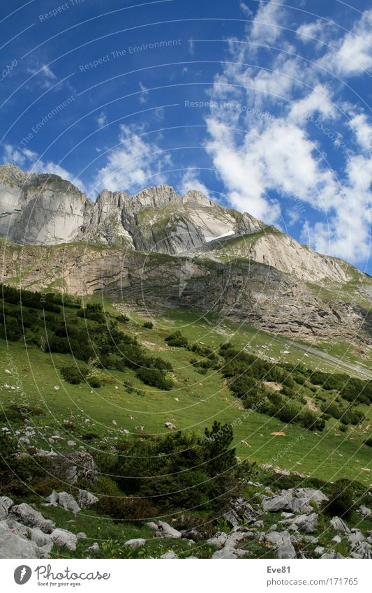 Cloud's in the Alps Himmel Natur Pflanze Sommer Ferne Tier Erholung Freiheit Berge u. Gebirge Landschaft gehen laufen Ausflug Felsen groß Urelemente