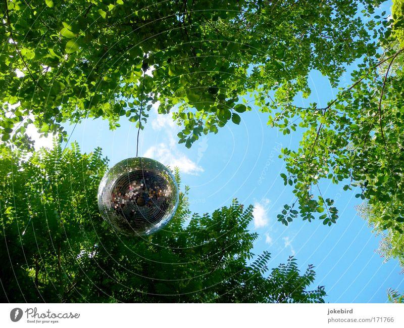 °D°I°S°C°O° Himmel blau grün Baum Freude Wolken Blatt Feste & Feiern Party Metall Luft Kunst Freizeit & Hobby Tanzen elegant modern