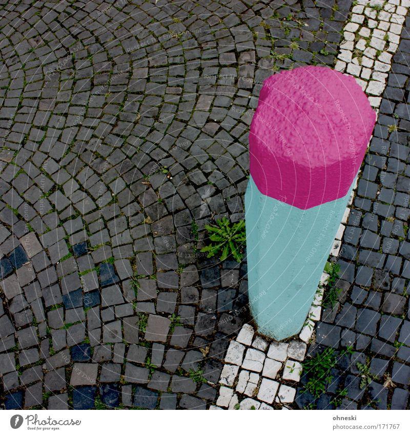 Streichholz weiß Straße Stein Linie rosa Löwenzahn Kopfsteinpflaster Säule Unkraut Poller übersättigt