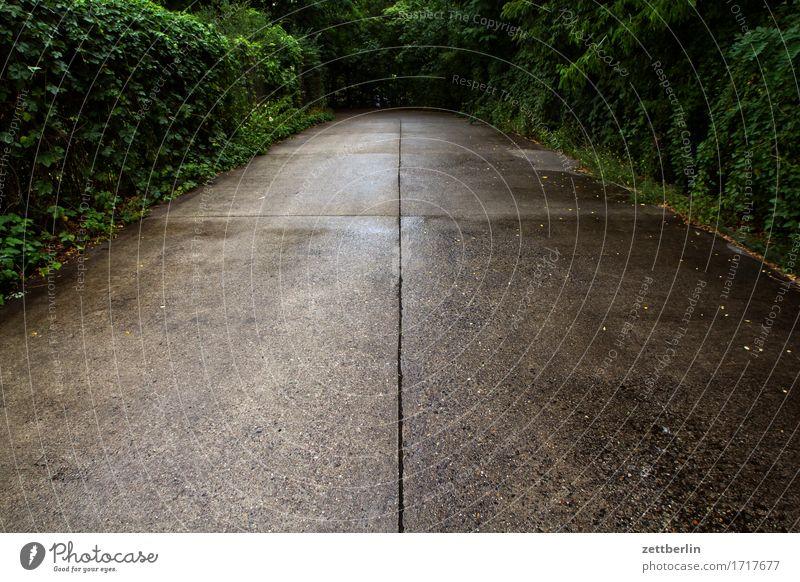 Erst gradeaus, dann links Wege & Pfade Straße Einfahrt fahren Zufahrtsstraße Kurve Verkehr Straßenverkehr Asphalt Linie Fuge privat Zentralperspektive Mitte
