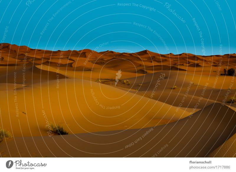 Sahara Desert, Wüste Ferien & Urlaub & Reisen Natur Sand schön Zufriedenheit Erholung Freiheit adventure africa blue desert dune golden heat hill landscape