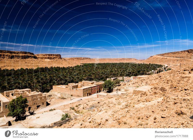 Marocco Ferien & Urlaub & Reisen Sommer Natur Landschaft Pflanze Klima Baum exotisch Wüste Freizeit & Hobby africa berber blue cultural desert house landscape