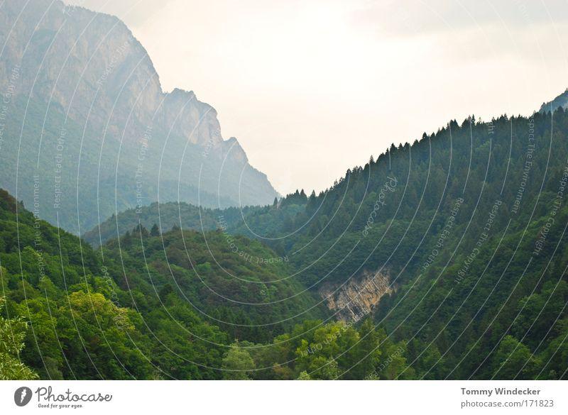 Heimweh Panorama (Aussicht) Ferien & Urlaub & Reisen Tourismus Berge u. Gebirge Klettern Bergsteigen Natur Landschaft Sommer Baum Wald Hügel Felsen bedrohlich
