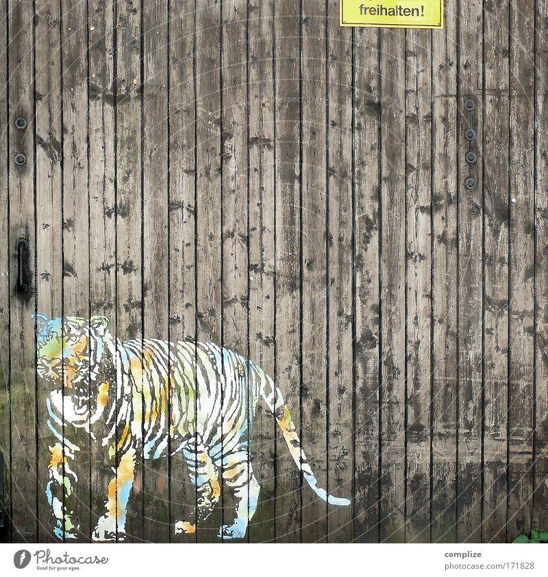 Safari Tier Straße Katze Freiheit Kunst Tür Umwelt frei Schriftzeichen Afrika Zoo Zeichen Tor Wildtier Hinweisschild Verbote