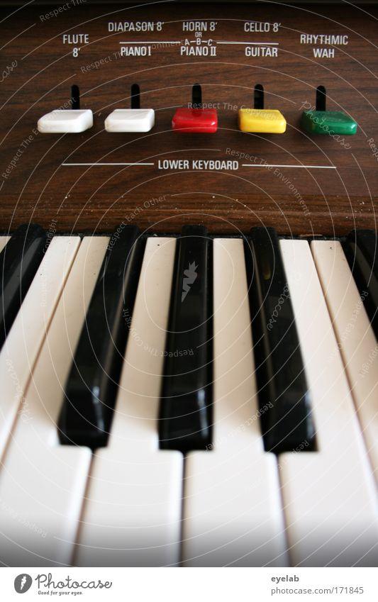 Musikerziehung Lektion 1 Farbfoto Innenaufnahme Nahaufnahme Detailaufnahme Textfreiraum unten Tag Schatten Schwache Tiefenschärfe Freizeit & Hobby Spielen