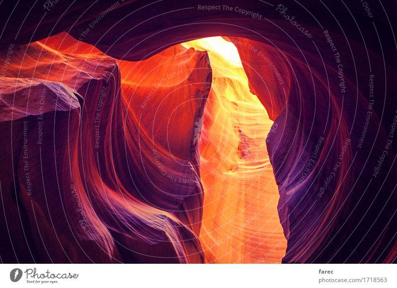 Antelope Canyon Navajo Tribal Park Sommer Landschaft gelb außergewöhnlich Stein Sand Felsen orange Erde wandern authentisch laufen Schönes Wetter USA violett