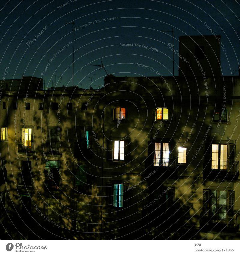 Innenhof bei Nacht alt Baum Haus Fenster träumen Stadt fliegen Fassade schlafen Licht Antenne Altstadt
