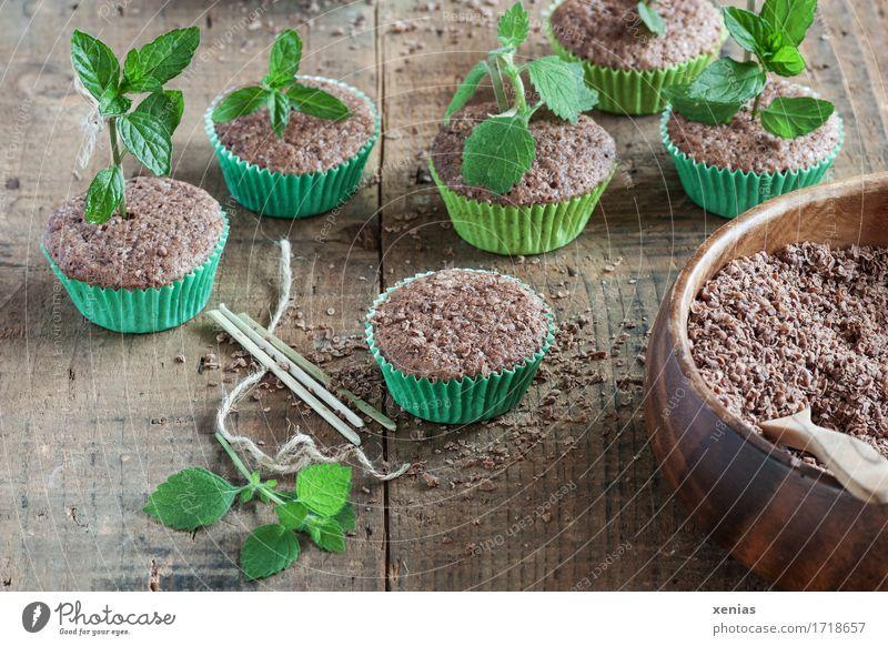 Muffins mit Kuchen und Kräuter wie in der Baumschule Schokoladenkuchen Teigwaren Backwaren Süßwaren Kräuter & Gewürze Minze Zitronenmelisse Melisse