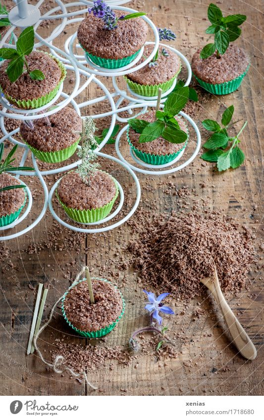 weiße Etagere mit Muffin aus Schokoladenkuchen und deren Zubereitung Kuchen Teigwaren Backwaren Kräuter & Gewürze Schokoladenstreusel Löffel Holzlöffel Kakao