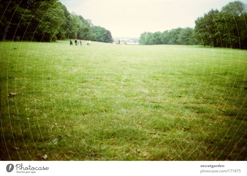 [HH09.3/4] ........dem paradies. Himmel Natur grün Baum Ferien & Urlaub & Reisen Sommer Einsamkeit Ferne Wald Wiese Landschaft klein Frühling Park hell Horizont