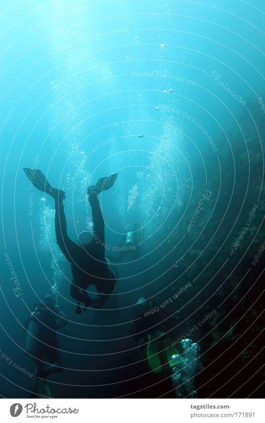 DRUCKAUSGLEICH Meer blau Sommer Ferien & Urlaub & Reisen Erholung Abenteuer tauchen Gebäude entdecken Blase Indien atmen Ereignisse Schweben Malediven Taucher