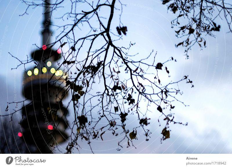 Der Turm Herbst Baum Zweig München Olympiapark Olympiaturm Sehenswürdigkeit Wahrzeichen Punkt Leuchtpunkt Licht leuchten dunkel Stadt blau gelb rot schwarz