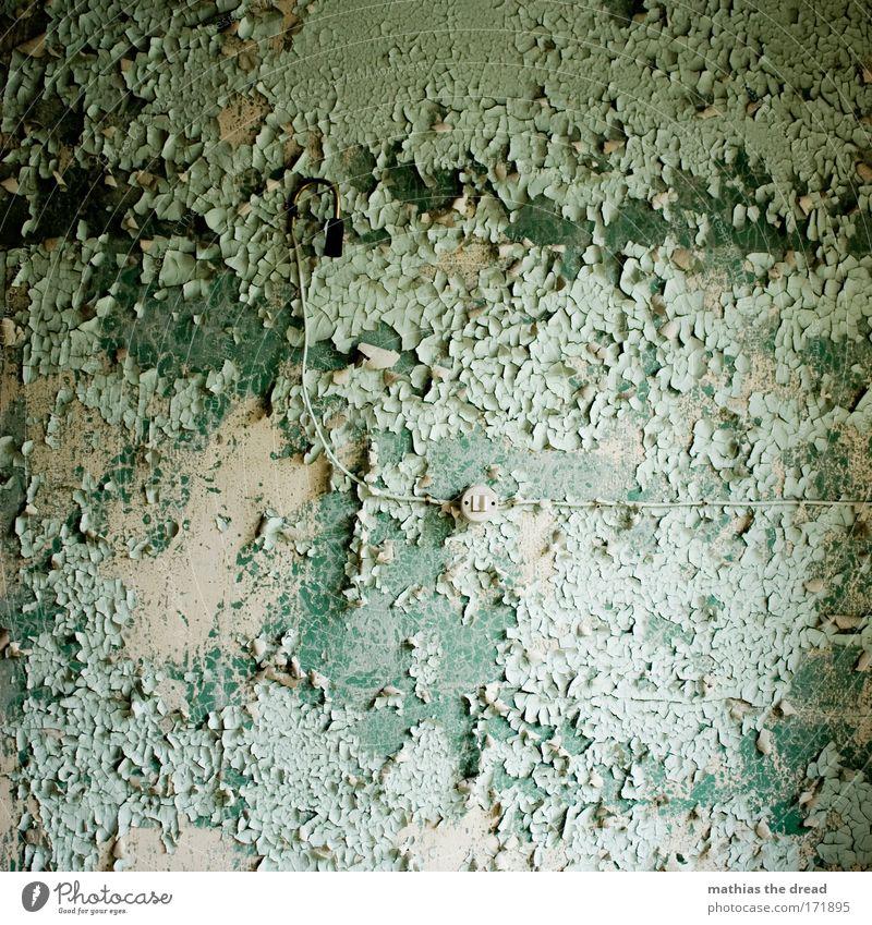 KABELANSCHLUSS alt grün Haus Wand Mauer Gebäude Fassade leer Fernseher Kabel Fabrik Tapete Verfall türkis Ruine