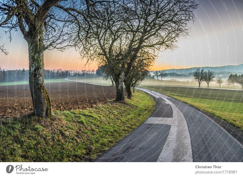 Mystic road Wellness Leben harmonisch Wohlgefühl Sinnesorgane ruhig Meditation Ferien & Urlaub & Reisen Tourismus Ausflug Abenteuer Ferne Umwelt Natur