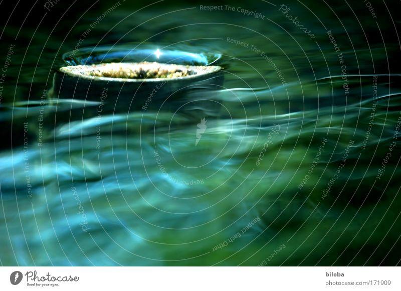 Old Water Natur Wasser grün blau Sommer Umwelt Urelemente fließen