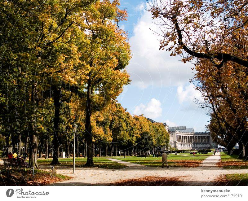 weiß Baum blau Sommer gelb Garten Park Landschaft laufen gold groß Europa Wahrzeichen Schönes Wetter Hauptstadt Belgien