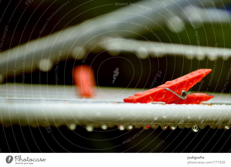 Trockner, nass Farbfoto Außenaufnahme Tag rot Klammer Wäscheklammern Wäschetrockner Wassertropfen Tropfen Regen Haushaltsführung