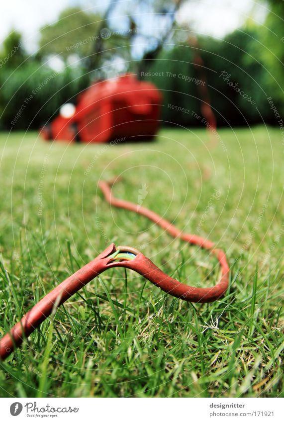 Energiekrise Pflanze Sommer Arbeit & Erwerbstätigkeit Wiese Tod Gras Frühling Garten warten Energiewirtschaft Elektrizität Kabel kaputt Vergänglichkeit Wut