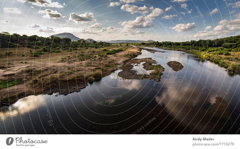 Crocodile River Natur Landschaft Pflanze Wasser Himmel Wolken Sommer Wärme Flussufer Savanne Ferien & Urlaub & Reisen exotisch Unendlichkeit blau braun