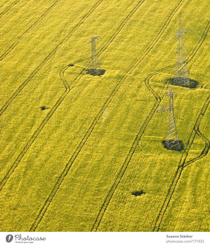 Rapsergie Natur Pflanze Sommer Tier Erde Feld Energiewirtschaft Luftverkehr Sträucher Technik & Technologie Güterverkehr & Logistik Schönes Wetter Landwirtschaft Ballone Strommast Ackerbau