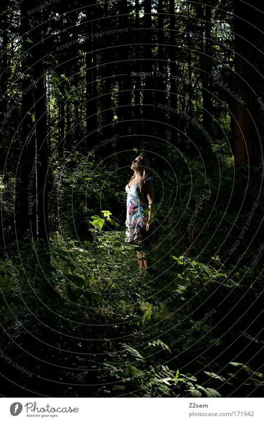 alone in the dark Farbfoto Außenaufnahme Kontrast Mensch feminin Junge Frau Jugendliche 18-30 Jahre Erwachsene Umwelt Wald Kleid blond langhaarig Denken stehen