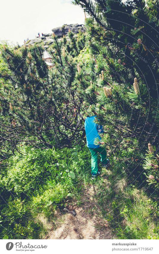 Kinder Outdoor Natur Abenteuer Mensch Ferien & Urlaub & Reisen Sommer Landschaft Meer Freude Wald Umwelt Junge Spielen Garten Freiheit Felsen Tourismus