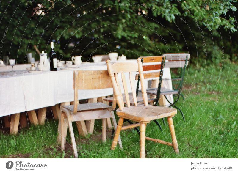 Sommerbankett Lifestyle Stil Häusliches Leben Möbel Stuhl Tisch Feste & Feiern Essen trinken Erntedankfest Landschaft Schönes Wetter Garten Park Wiese