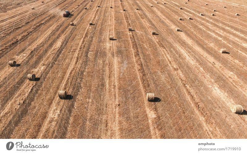 Luftbild einer Traktor-Strohballenpresse bei der Arbeit auf einem landwirtschaftlichen Feld Sommer Arbeit & Erwerbstätigkeit Industrie Maschine Natur Landschaft