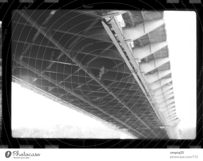 Blaues Wunder s/w Brücke Architektur Stahl alt historisch Stadt blau schwarz weiß Träger Strukturen & Formen Stahlkonstruktion Sehenswürdigkeit Dresden