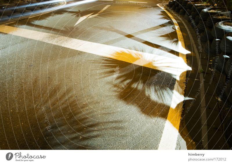 miami heat Pflanze Ferien & Urlaub & Reisen Sommer Straße Umwelt Bewegung Wege & Pfade Stimmung Design Verkehr außergewöhnlich Florida Verkehrswege Straßenbeleuchtung Straßenbelag Autofahren