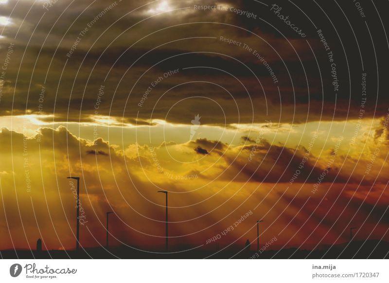 Ein Tag geht zu Ende Umwelt Natur Sonnenaufgang Sonnenuntergang Sonnenlicht Klima Klimawandel Wetter gold orange schwarz Abenteuer Einsamkeit Endzeitstimmung