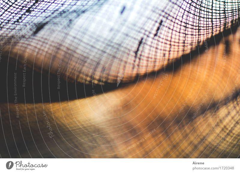 verhangen Dekoration & Verzierung Vorhang Gardine Himmel Sonnenaufgang Sonnenuntergang Schönes Wetter Stoff leuchten Wärme orange schwarz Farbfoto Innenaufnahme