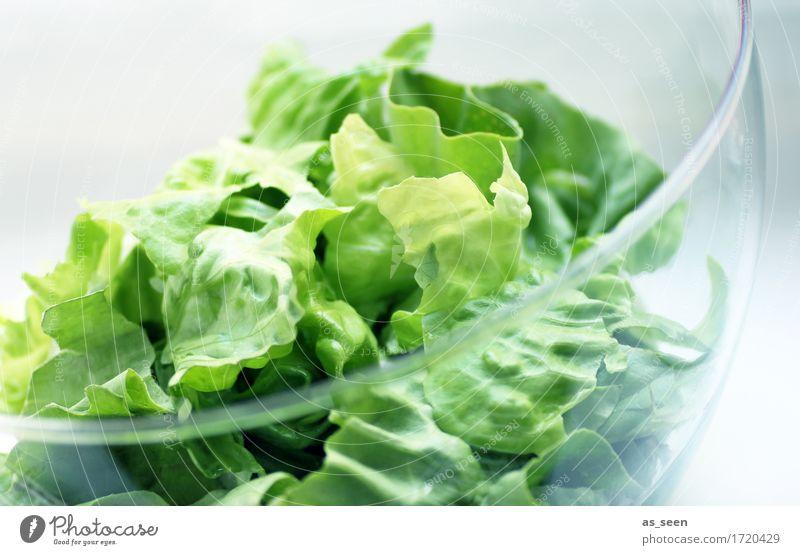 Veggie Day Farbe grün Leben Essen natürlich Lifestyle Gesundheit Lebensmittel hell frisch Ernährung Glas genießen Coolness Küche Wellness