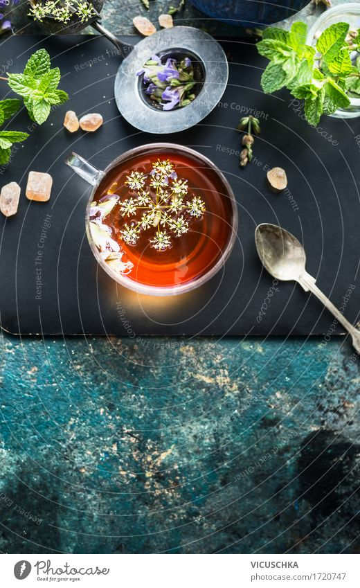Tasse mit Fencheltee Lebensmittel Kräuter & Gewürze Bioprodukte Getränk Heißgetränk Tee Glas Löffel Stil Design Gesunde Ernährung Kur Wärme Kräutertee Samen