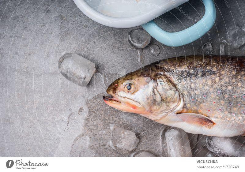 Forelle mit Eiswürfeln Lebensmittel Fisch Ernährung Diät Topf Stil Design Gesunde Ernährung Tisch Küche Coolness Essen zubereiten Küchentisch Foodfotografie