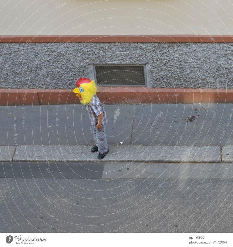 Verrücktes Huhn Mensch rot Freude Tier gelb grau Tanzen lustig maskulin Kindheit Stolz Haushuhn Hahn Altstadt Nutztier Vogel