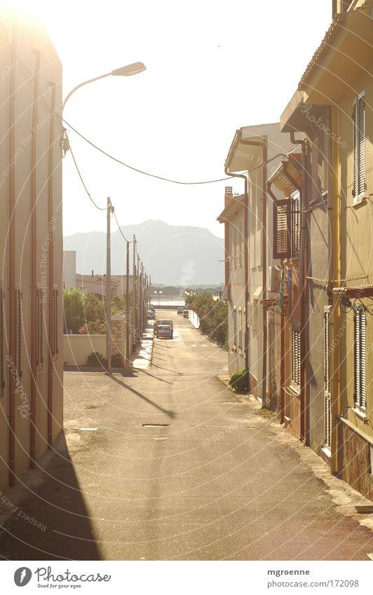 golden St. Lucia Sonne Sommer Ferien & Urlaub & Reisen Haus Ferne Straße Freiheit Wärme Landschaft braun gold groß Europa ästhetisch Tourismus authentisch