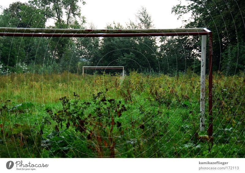 sport frei Natur grün Pflanze Wiese Platz Dorf Tor Fußballplatz Ballsport