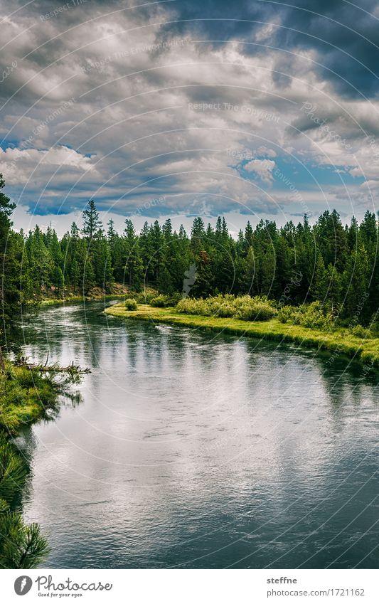 Wilderness Natur Landschaft Urelemente Wasser Himmel Wolken Sommer Baum Wald Flussufer wandern USA Oregon Pinie malerisch Idylle bob ross bedrohlich dunkel