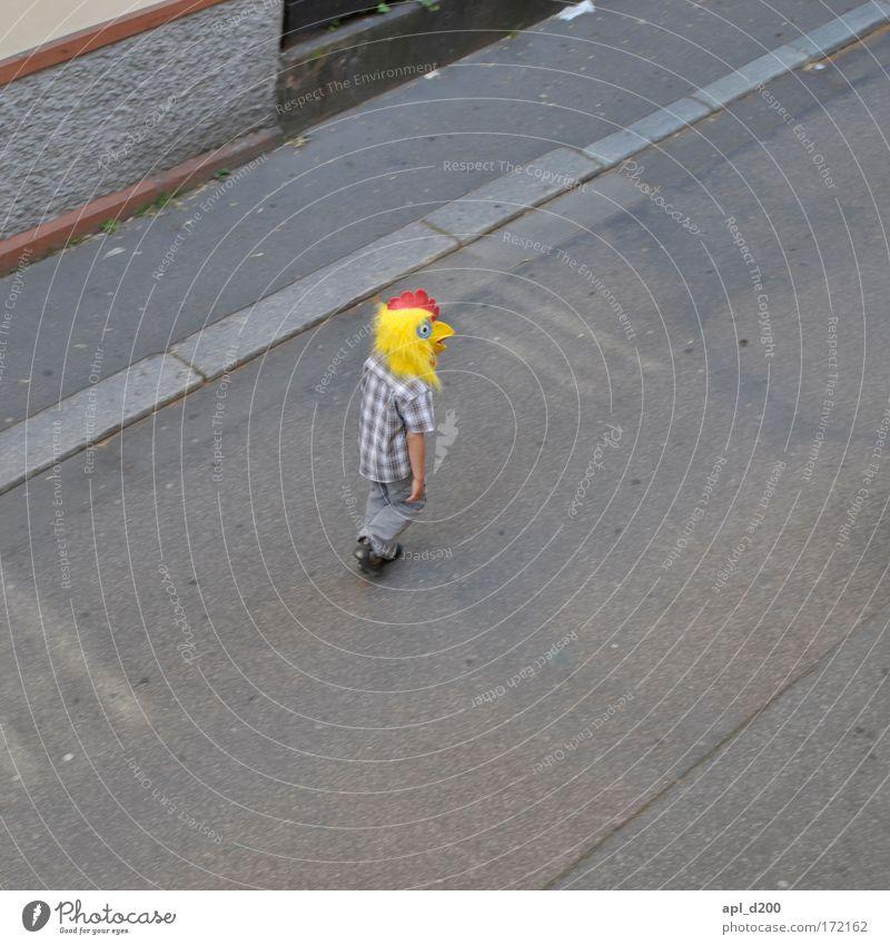 Holzfällerhuhn Mensch Stadt rot Freude Tier gelb grau Bewegung gehen maskulin außergewöhnlich Coolness entdecken Haushuhn Nutztier Altstadt
