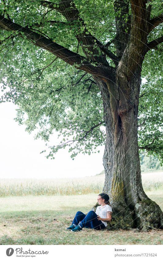 Naturchillen Mensch Frau Sommer Baum Landschaft Erholung ruhig Erwachsene Leben Lifestyle feminin Stil Freiheit Freizeit & Hobby Zufriedenheit