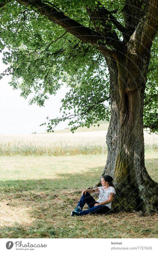 Sommertag Mensch Frau Natur grün Baum Landschaft Erholung ruhig Ferne Erwachsene Umwelt Leben Lifestyle Gras feminin
