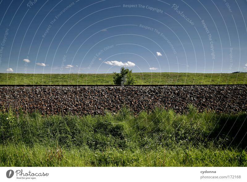 Im Mittelpunkt Natur Himmel grün Sommer ruhig Ferne Leben Wiese Gras Bewegung Freiheit träumen Traurigkeit Wege & Pfade Landschaft Umwelt